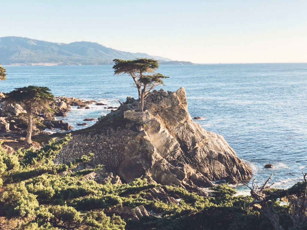 The Lone Cypress Monterey