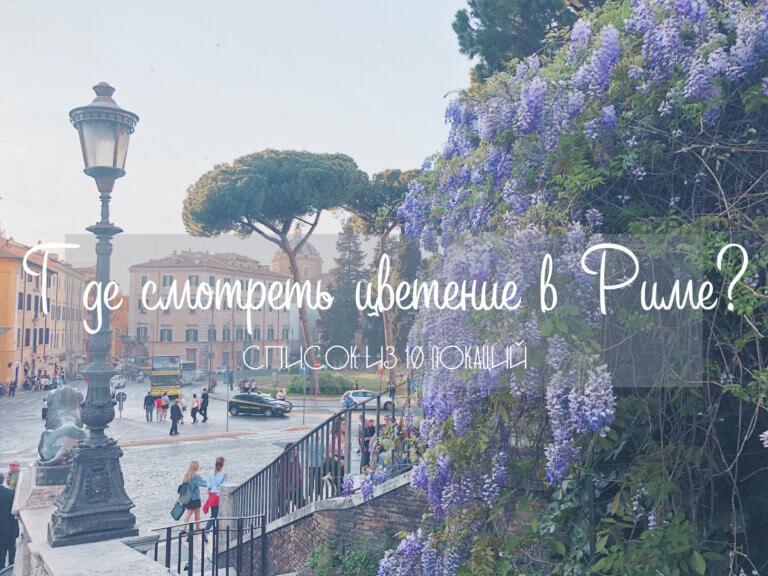 Где смотреть весеннее цветение в Риме? Список из 10 локаций