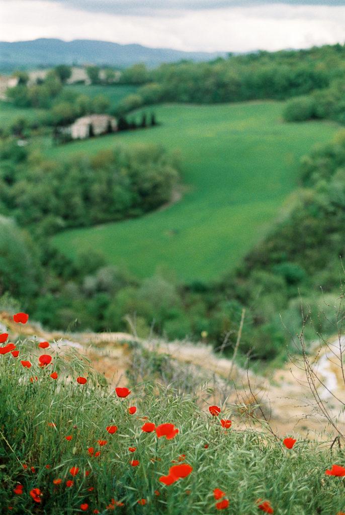 Баньо-Виньони Тоскана. Маки в Тоскане