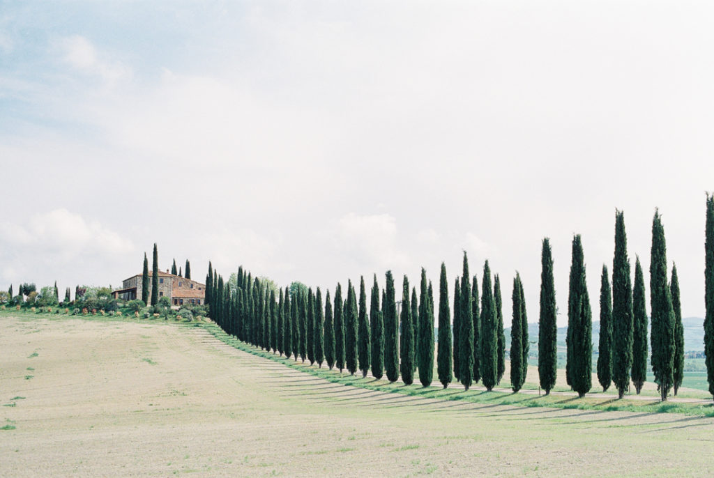 Аллея кипарисов Тоскана