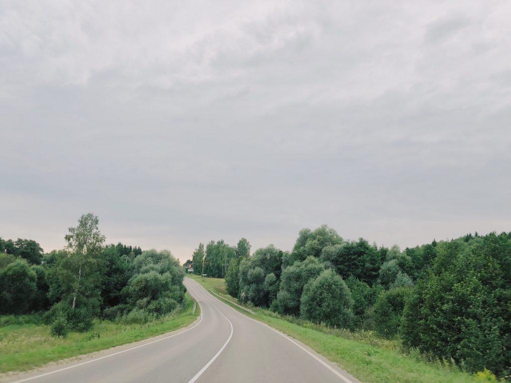 дорога между деревьев
