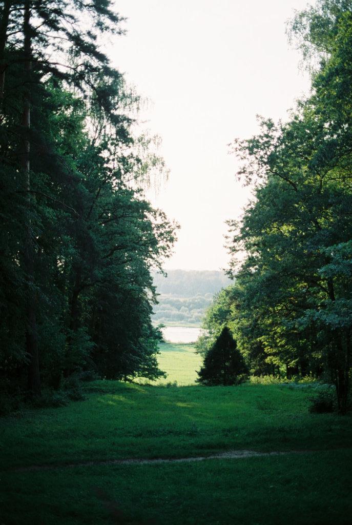 усадьба Поленово Тульская область