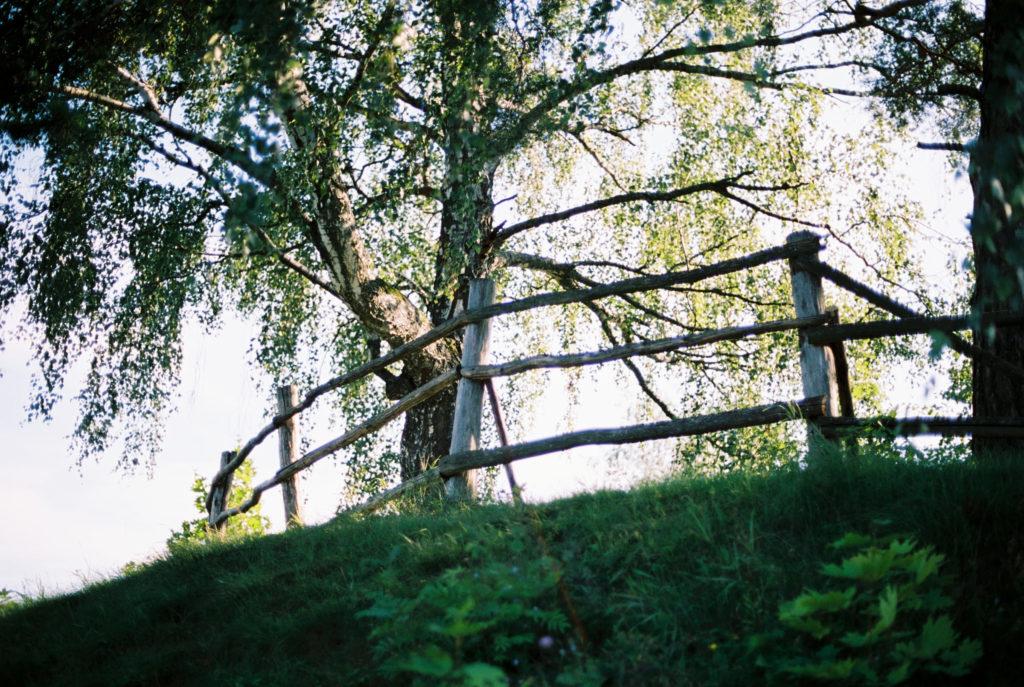 Поленово музей-усадьба Тульская область