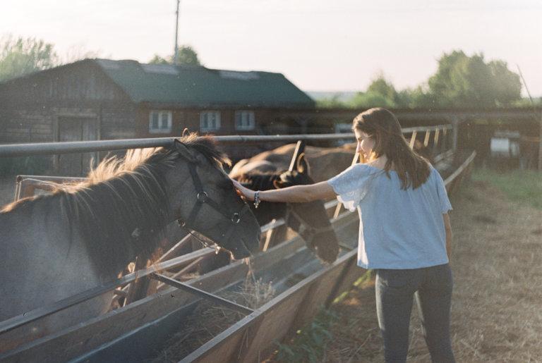 Где покататься на лошадях в Подмосковье? Ранчо Аванпост