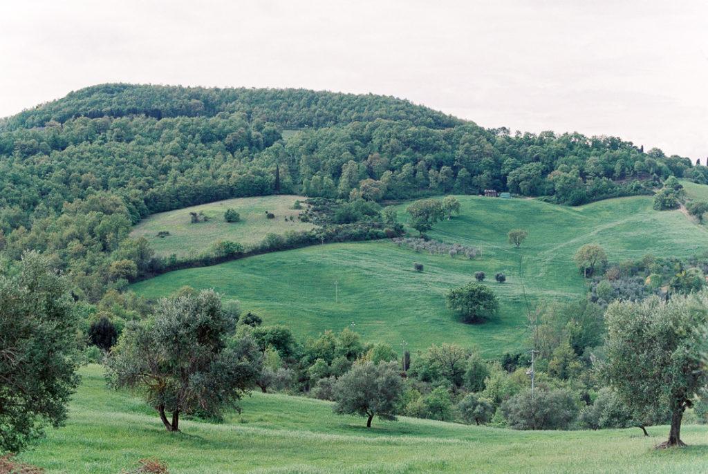 Тосканские холмы. Тосканские пейзажи