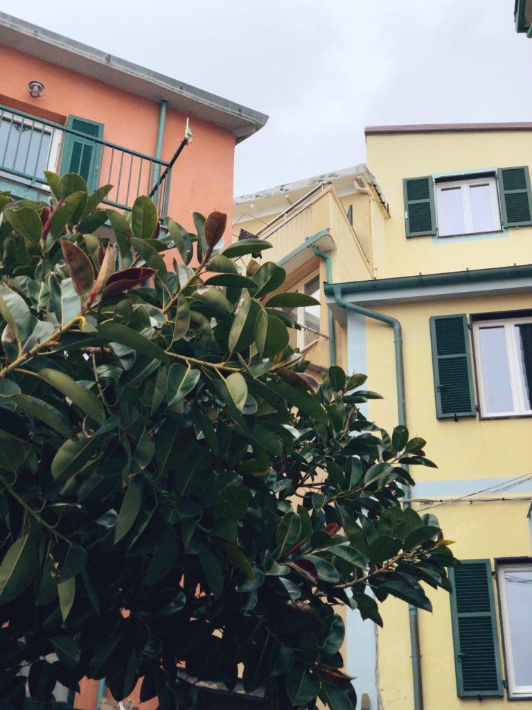 чцветные домики со ставнями