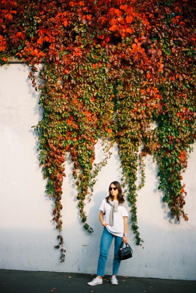 морозовский сад в Москве осенью фото